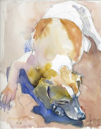 a watercolour of a jack russel terrier