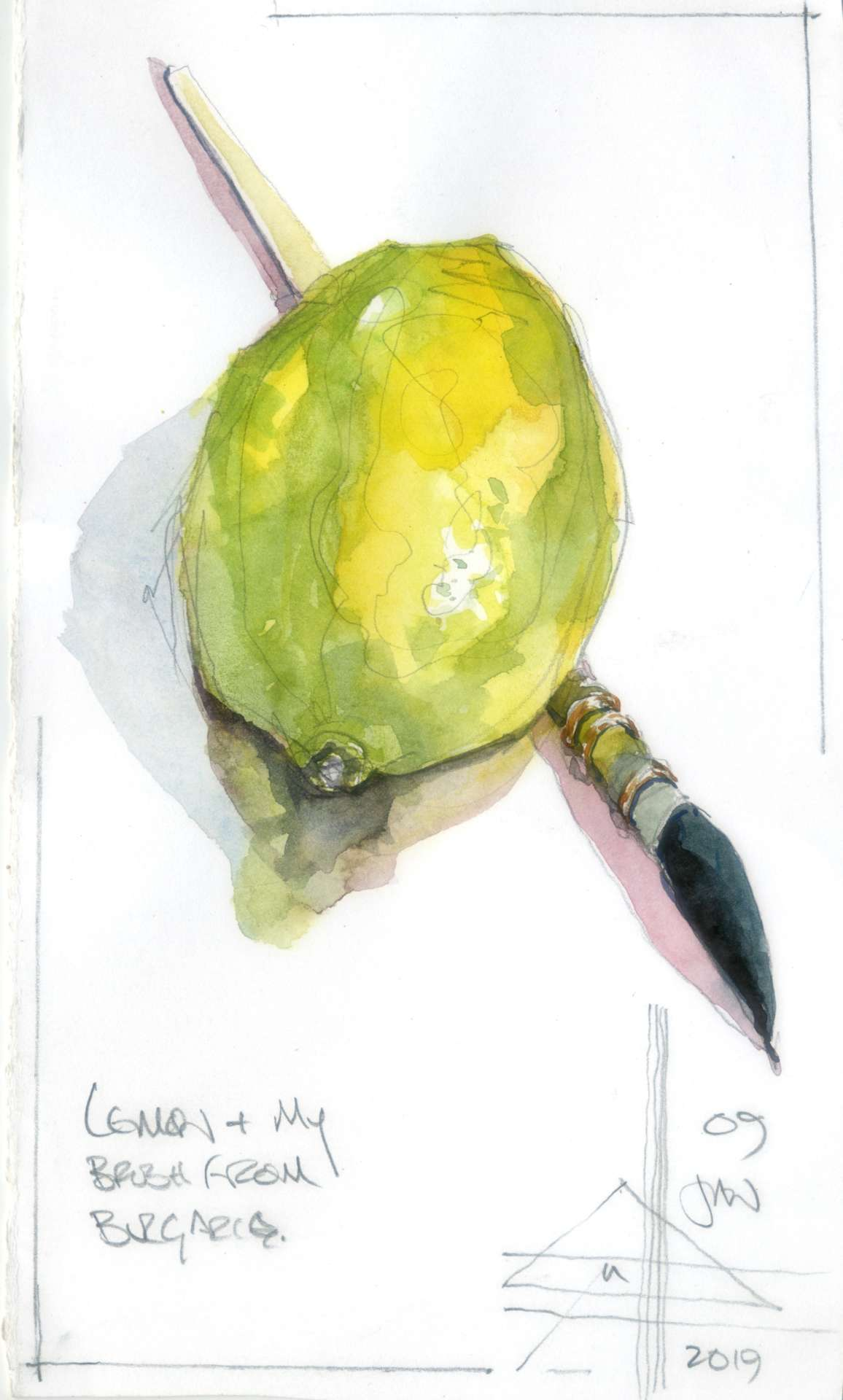 Lemon #14. A fresh lemon painted in watercolour.