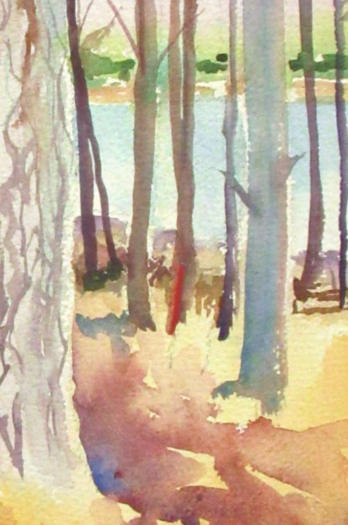 Pine Forest 1. A watercolour painting of the forests in Grabouw.