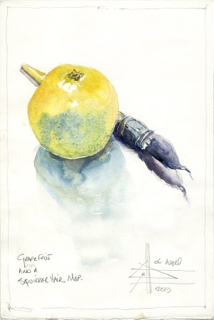 Watercolour of a Grapefruit
