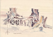 watercolour painting of exposed tree roots