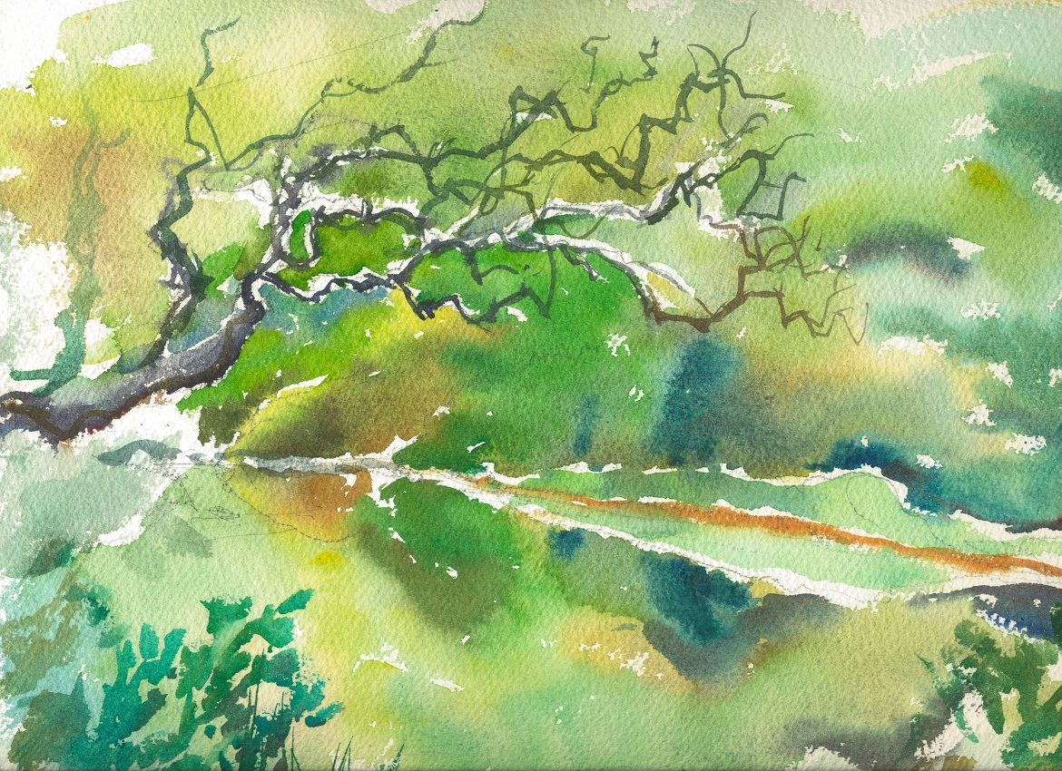 Watercolour of Touw River at Ebb and Flow in Wilderness