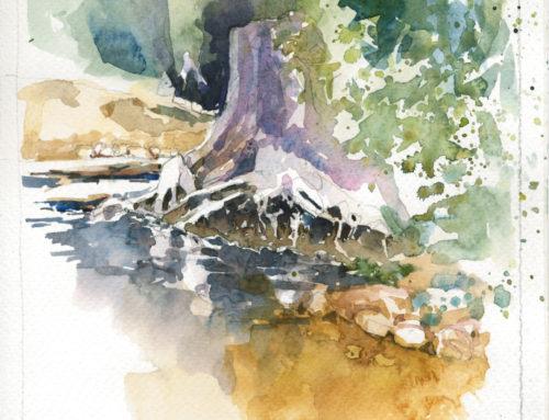 Radloff Park – A morning of watercolour