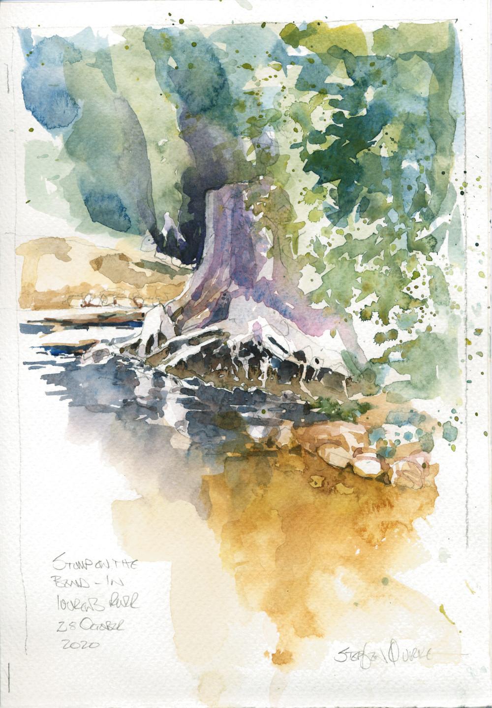 watercolour of a tree stump