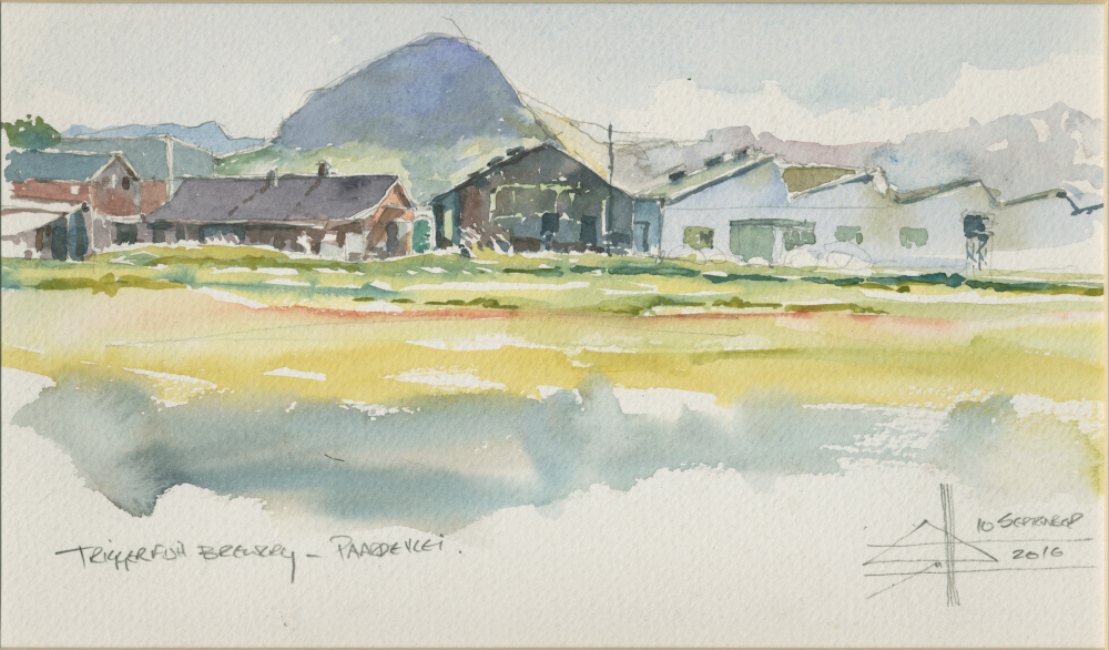 watercolour of trigger fish brewery and Helderberg Mountain