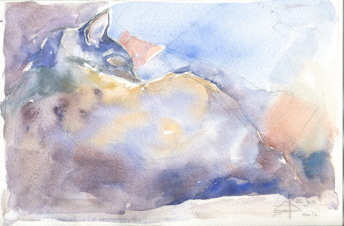 Watercolour of a cat