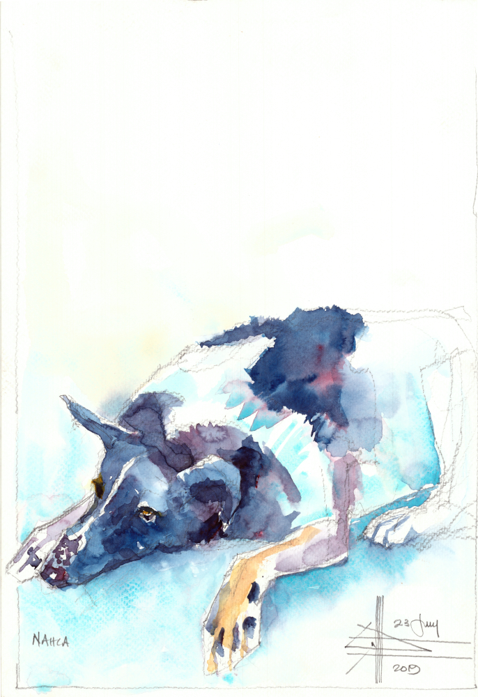 watercolour of a dog
