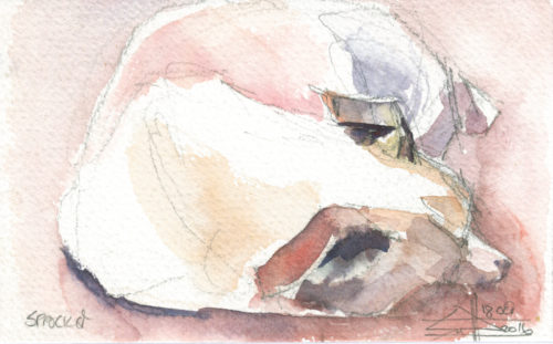 watercolour of a sleeping jack russell