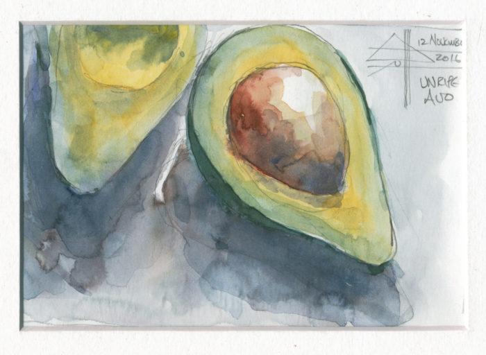 watercolour of an avocado