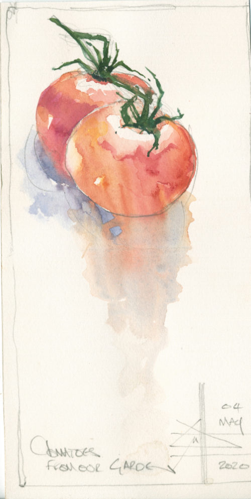 Render in watercolour - make it intriguing - picture of tomatoes