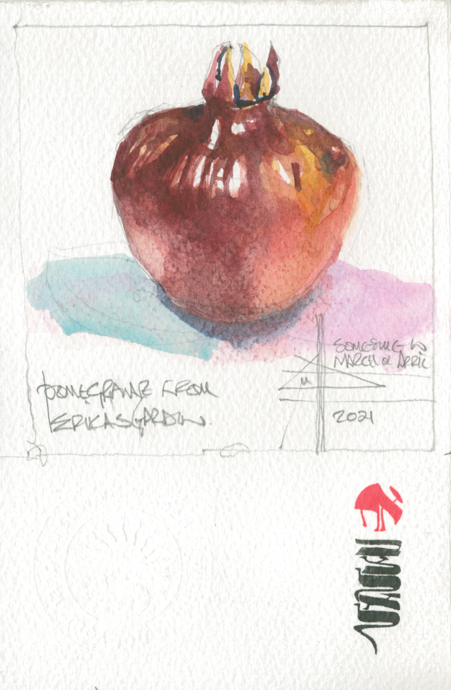 picture of a pomegranate - Render in watercolour - make it intriguing
