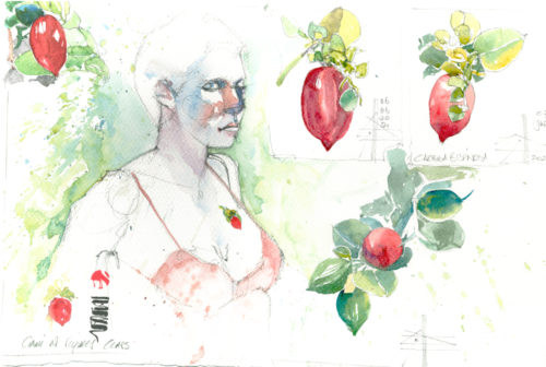 Render in watercolour - make it intriguing - watercolour of figure and fruit