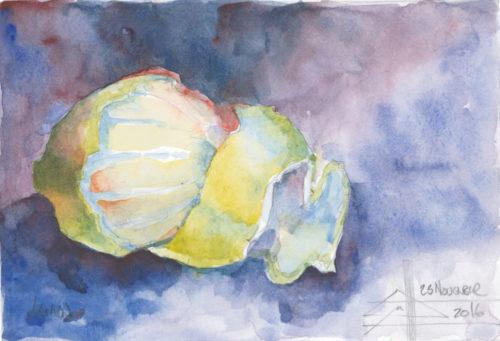watercolour of a lemon