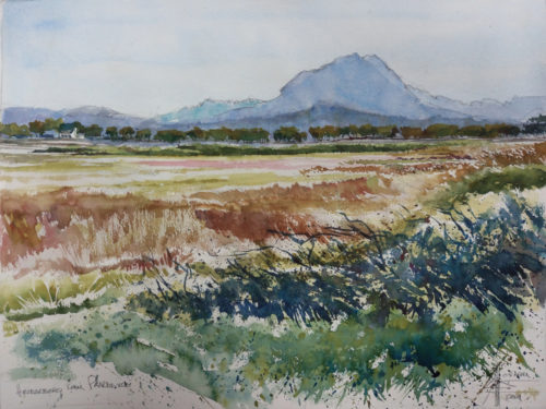 watercolour of Paardevlei