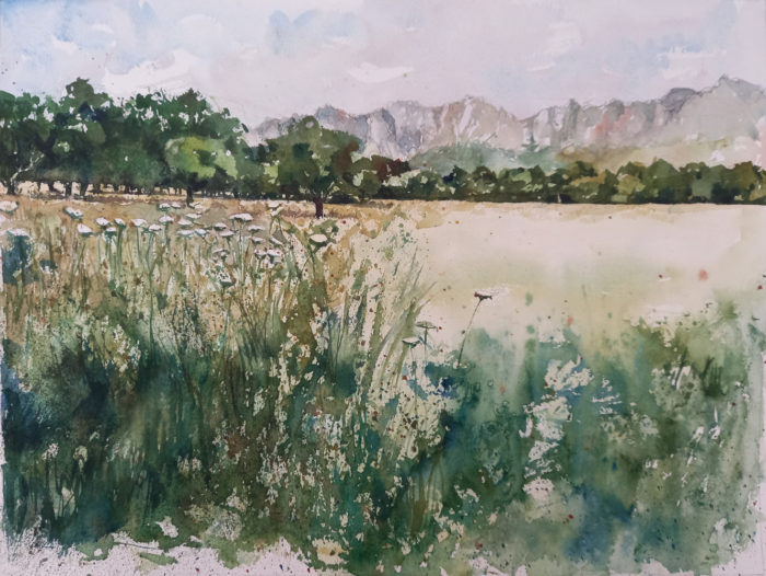 watercolour of trees in a field